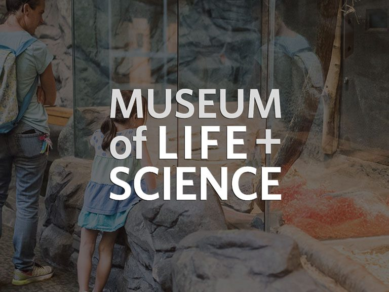 museum-of-life-and-sciences